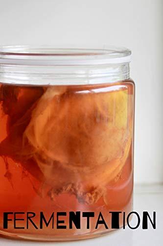 Fermentation: Notizbuch bzw. Notizheft für das fermentieren, einmachen, einlegen oder gären. (Fermentation D, Band 3)