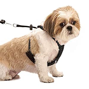 Dog Harness – No pull and No choke humane Design, Non Pulling Pet Harness with Mesh vest, Easy Step-in Adjustable Mesh Harness for control, Patented Dog Pull Control Technology by Sporn