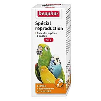Beaphar Complément Alimentaire Spécial Reproduction pour Oiseau