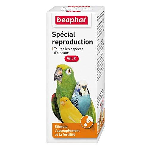 BEAPHAR – Complément alimentaire spécial reproduction pour oiseau – Convient à toutes les espèces d'oiseaux – Stimule l'accouplement – Améliore la fertilité – Idéal en période de reproduction – 50ml