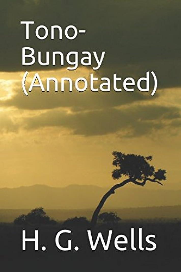 パイプライン有限プラットフォームTono-Bungay (Annotated)