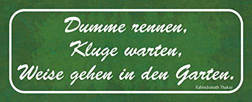 Dumme rennen Kluge warten Weise gehen in den Garten Blechschild Metallschild Schild gewölbt Metal Tin Sign 10 x 27 cm