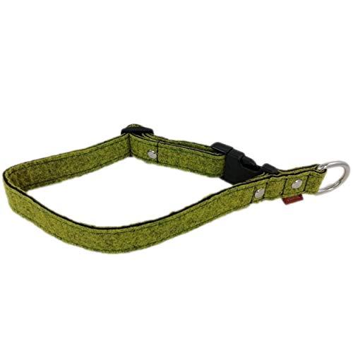 Venetto Halsband Filz Filzhalsband Hundehalsband für kleine und große Hunderassen, Made in Germany (2,5cm, Oliv meliert)