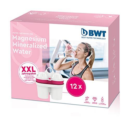 BWT 814520 - 12 Cartucce filtranti mineralizzate al magnesio, fornitura annuale