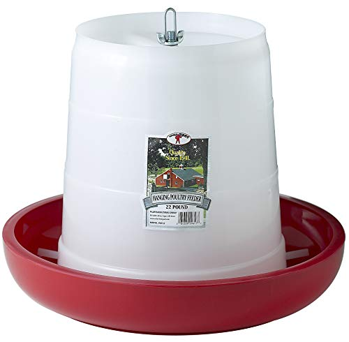 Little Giant Plastic Hanging Poultry Feeder (22 Pound) Heavy Duty Automatic Feed Container for Poultry & Chicken (Item No. PHF22)