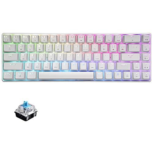 60{2dd868a3871244f80270950b207781c4c38922cbfec422a94897e62771998ef3} mechanische Mini-Tastatur, kompakt 68 Tasten, USB C, kabelgebunden, RGB-Tastatur, 18 Chroma Rainbow Hintergrundbeleuchtung, tragbar, kompatibel mit PS4, Xbox, PC, Laptop – Weiß/Blauer Schalter