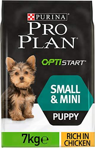 Purina Pro Plan Hundefutter für kleine und kleine Welpen mit OptiStartart, reich an Trockenfutter für Hühner