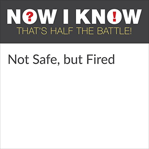 Not Safe, but Fired cover art