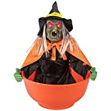 ITART Halloween Candy Bowl Witch Animated Candy Dish Halloween Decorations for Treat or Trick Candy Holder Container