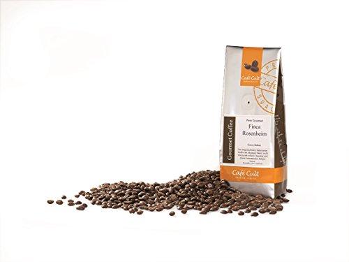 1kg - frischer Röstkaffee - Café Cult - Peru - Finca Rosenheim - ganze Bohnen