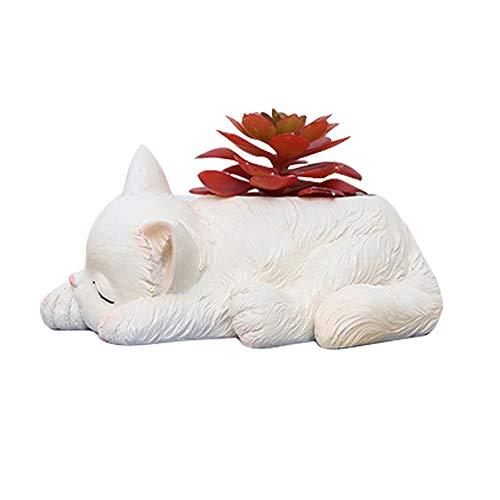 Süß Katze Blumentöpfe dekorativen Töpfen, Blumenübertopf Übertopf Für Zimmerpflanzen, Sukkulenten, Luftpflanzen, Kakteen, Kunstpflanzen und Mehr