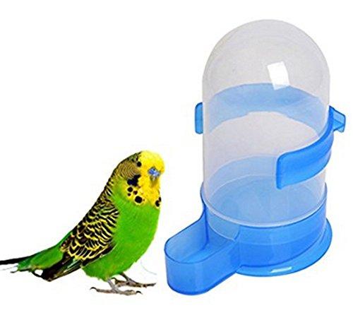 Kentop Papageien Trinkflaschen Wasserspender Wasserflasche Hänger Kunststoffe Size 500ml