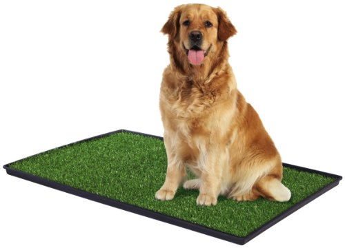 Prevue Pet Products Tinkle césped para razas de perros grandes
