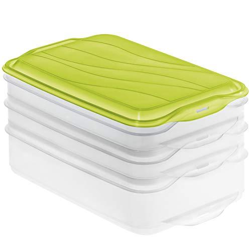 Rotho Rondo 3-teilige Vorratsdose 2x 0.75l und 1x 1.35l mit Deckel, Kunststoff (PP) BPA-frei, grün, 2 x 0,75l + 1 x 1,35l (23,5 x 15,5 x 11,5 cm)
