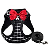 Cat Harness and Leash Kitten Harness Cat Leash Rabbit Harness for Small Dogs Cat Harness Escape Proof with Bell and Bow-Knot Decoration Cat Outdoor Enclosures-XS