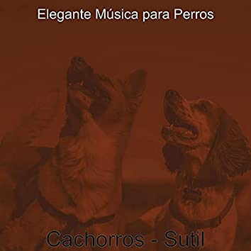 Cachorros - Sutil