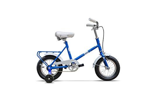 Ape Rider Kinderfahrrad Mädchenfahrrad und Jungesfahrrad mit Trainingsrädern - Premium Fahrradrahmen mit verstellbarem Sitz, Lenker - Stützrädern Cycling Starter für Kinder ab 3 Jahre