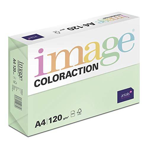 Image Coloraction - farbiges Kopierpapier Forest/grün 120g/m² A4 - Paket zu 250 Blatt