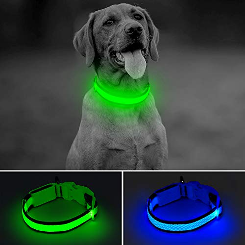 BSEEN LED Dog Collar USB Rechargeable Glowing Lighted Up Pet Collar, Lightweight Nylon Webbing High Visibility Keep Pet's Safety Glow in The Dark for Small Medium Large Dogs (Green, Medium)