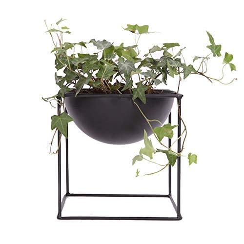 Pot de fleurs décoratif moderne en métal pour cactus (petit)
