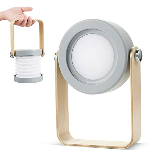 【Haruhana】 アコーディオン型 フレキシブル 蛇腹構造 角度変更可能 充電式 ランタン 読書灯 LEDライト - ホワイト (グレー)