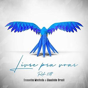 Livre Pra Voar (Radio Edit)