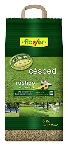 Flower 10783 10783-Semilla césped rústica, 5 kg, No aplica, 25x14.5x54 cm
