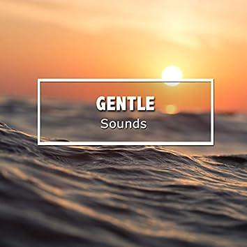 #17 Gentle Sounds for Meditation