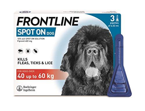 FRONTLINE Spot On Flea & Tick Treatment for Extra Large Dogs (40-60 kg) - 3 Pipettes