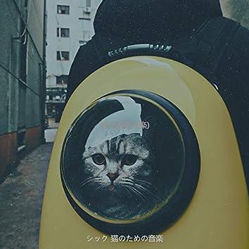 猫の訓練(音楽)