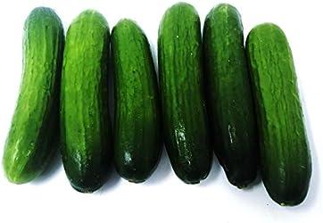 Amae Lebanese Cucumber, 20pkt/case