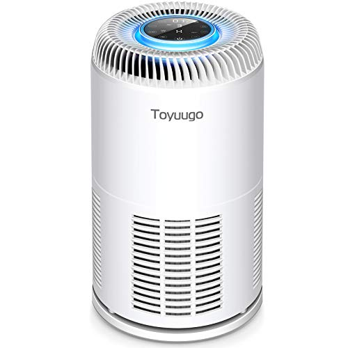 Air Purifier with True HEPA Filter - Purifies Air in Medium to Large Rooms and Spaces,Filters Indoor Air and Removes Smoke/Dust/Odor/Pollen/Pets Dander