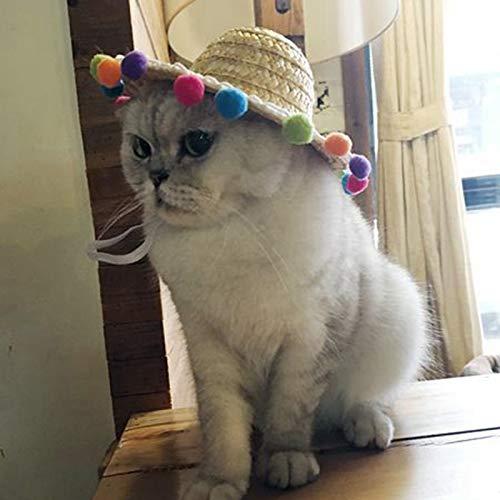 Pet Supplies Wohn Mini Pet Hunde Strohhut Hunde Hawaii-Art-Hut für Hunde lustige Accessoires Sombrero Kitty Hat Beach Party Strohhüte