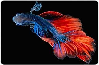 Artsadd ADEDIY New Custom Non Slip Door Mat Betta Fish Machine Washable Doormat Indoor Outdoor Floor Mat 23.6 X 15.7 Inch ...