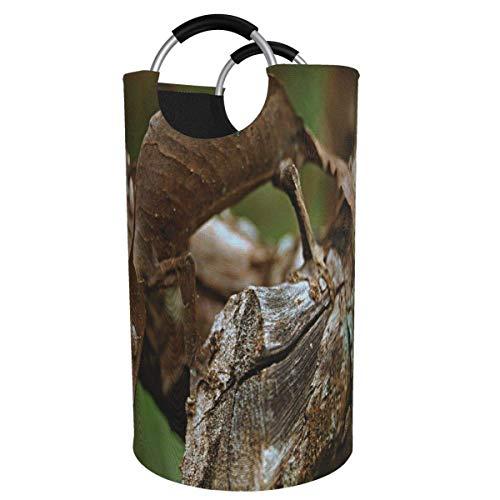 N\A Cesta de lavandera Grande, Gecko con Cola de Hoja de Satans Disfrazado 82L Cesto de lavandera de Tela Oxford Plegable Bolsa de lavandera Plegable con Asas Papelera de Lavado Impermeable