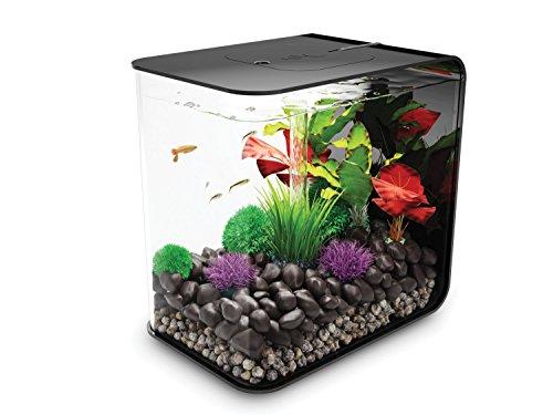 biOrb Reef One Flow Aquarium
