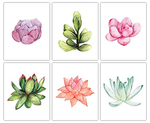 Watercolor Succulent Wall Art Prints - Set of Six (8x10) Unframed Pictures For Home, Office, Dorm & Chic Bedroom Decor - Great Gift Idea Under $25