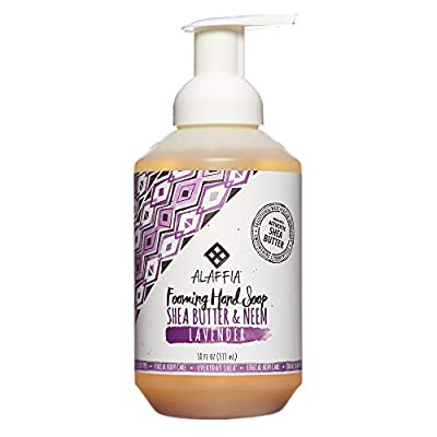 Alaffia - Everyday Shea - Foaming Shea Butter Hand Soap, 18 Ounces