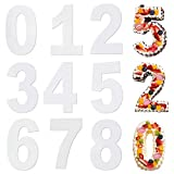 FANDE Molde para Tartas con Número,9PCS Molde Grande para Tartas con Números, Reposteria y Pasteleria Utensilios para Aniversario Bodas Cumpleaños Accesorios para Hornear