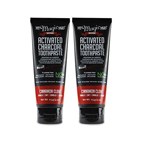MY Magic MUD actieve kool tandpasta kaneel (2 x 113 g), mooie krachtige mintsmaak, biologische tandpasta, veganistisch, fluoridevrij, natuurlijke cosmetica, natuurlijke charcoal toothpasta