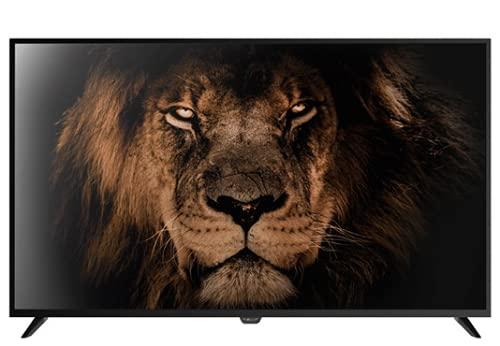 TV NEVIR LED 49' Smart TV TDT HDMI USB NVR-8075-494K2S-SMA-N