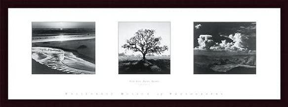 Printfinders Trilogy by Ansel Adams Custom Wood Framed Art Print