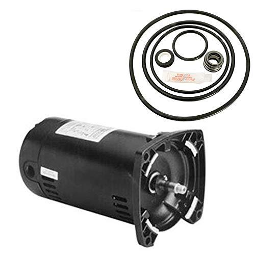 Puri Tech Sta-Rite Dyna-Glas .75HP MPRA6D-146L Replacement Motor Kit AO Smith USQ1072 w/GO-KIT-47