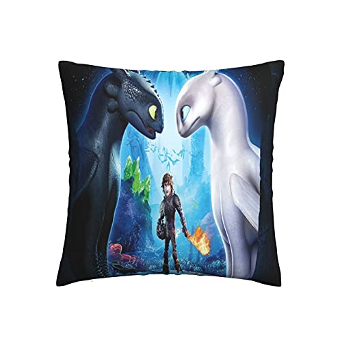 Xiaoxian Pillow Train Your Dra-Gon - Funda de almohada decorativa para el hogar, diseño de doble cara, funda de cojín para sofá, cama y coche