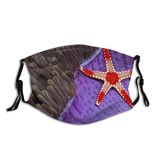 Cómodo collar de la máscara de la cara de la moda de la estrella del mar Sipadan Borneo Sea Star Nature Sun-Proof Bandana Headwear para la pesca