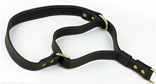 Strimm Hund Leder Kettenhalsband Kettenwürger Zughalsband mit Karabiner aus Edelstahl für Kleine Mittel Große Hund