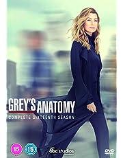 Grey's Anatomy Season 16 [DVD] [2020]
