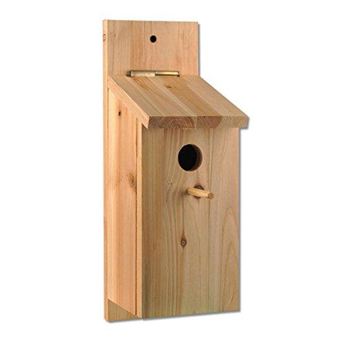 Nistkasten aus Holz zum Bauen und Selbstgestalten, Nistkasten-Bausatz mit kindgerechtem Holzhammer, Leim und Dübeln für Kinder   Wiemann Lehrmittel