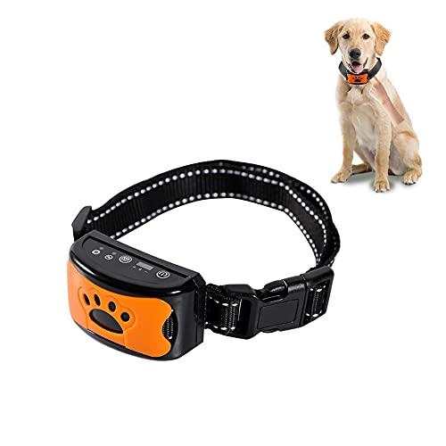 Bikirin Verbessertes Antibell Halsband, (USB Wiederaufladbares) No Harm Anti-Barking Erziehungshalsband Hund mit Vibration, Sound und No-Schock für Kleine Mittelgroße Hunde