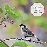身近な野鳥カレンダー2020(壁掛け)([カレンダー])